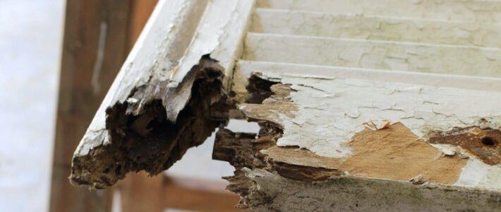 Réparation de volets battant persiennes bois